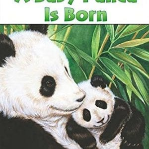 A-Baby-Panda-Is-Born-Penguin-Young-Readers-L3-0
