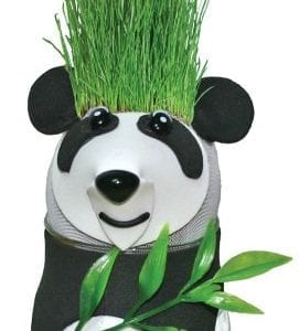 Grow-A-Head-Wildlife-Panda-0