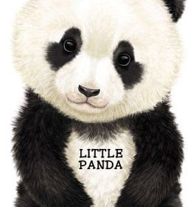 Little-Panda-Look-at-Me-Books-0