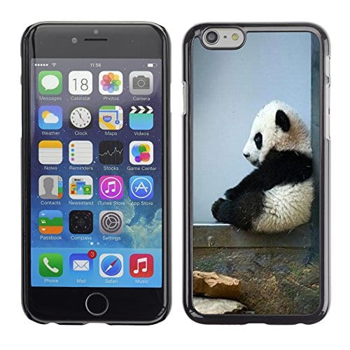 Graphic4You-Cute-Panda-Animal-Design-Hard-Case-Cover-for-Apple-iPhone-6-0