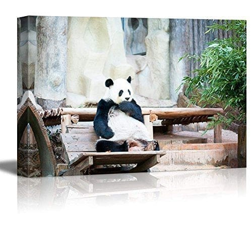 Canvas-Prints-Wall-Art-Cute-Panda-Bear-Sitting-on-a-Wood-Chair-Modern-Home-DeorationWall-Decor-Giclee-Printing-Wrapped-Canvas-Art-Ready-to-Hang-16-x-24-0