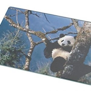Rikki-Knight-RK-LGCB-806-Panda-in-Tree-Glass-Cutting-Board-Large-White-0