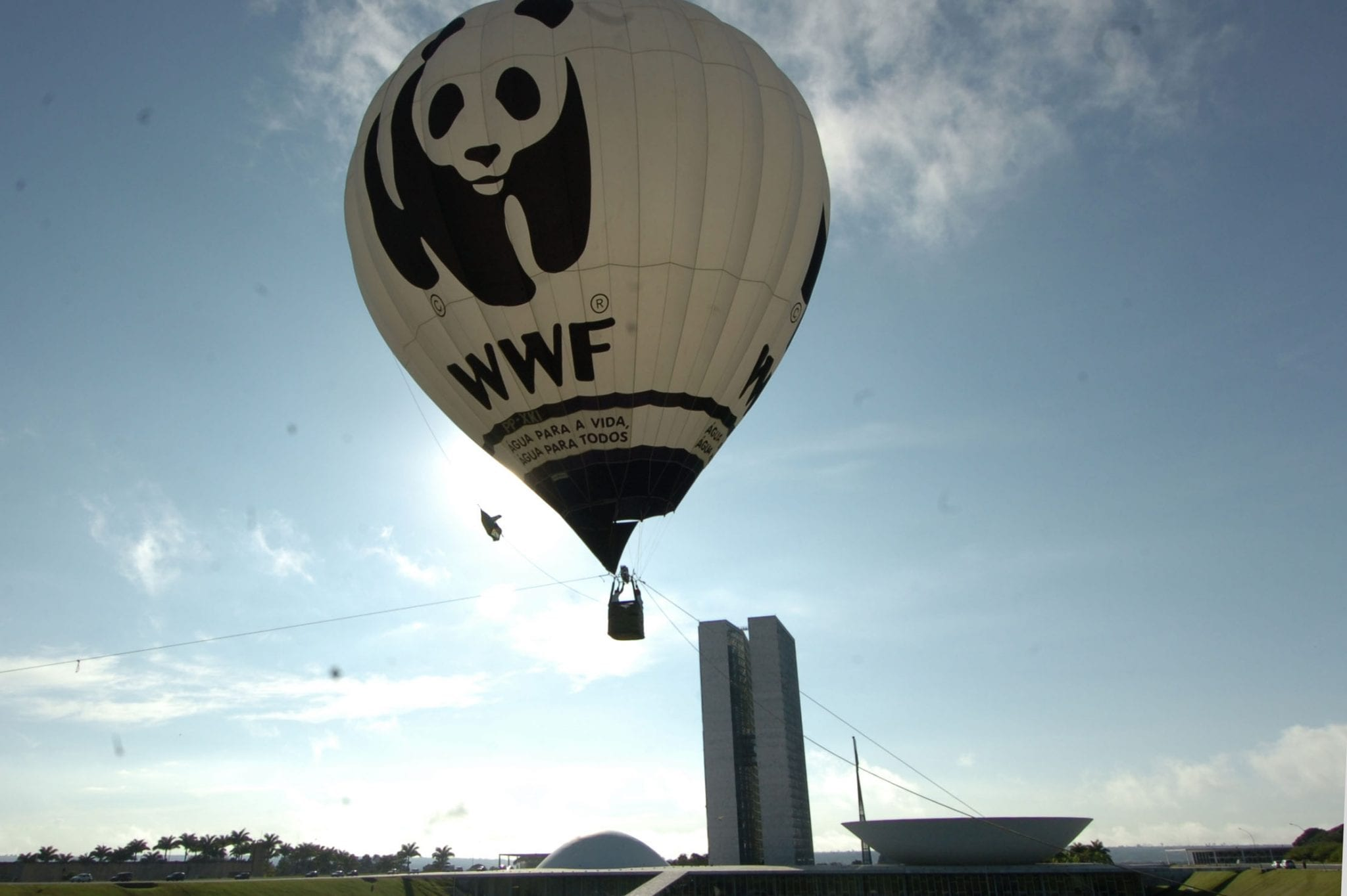 Why Should We Save The Giant Panda- WWF Hot Air Balloon