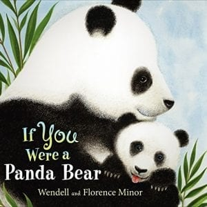 If-You-Were-a-Panda-Bear-0
