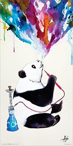 Marc-Allante-Panda-Smoking-a-Hookah-Modern-Contemporary-Animal-Decorative-Art-Poster-Print-12x24-0