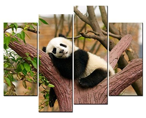 SmartWallArt-Animal-Paintings-Wall-Art-Lovely-Panda-Sleeping-on-a-Tree-4-Panel-Picture-Print-on-Canvas-for-Modern-Home-Decoration-0