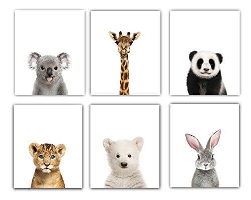 Baby Animals Nursery Wall Decor