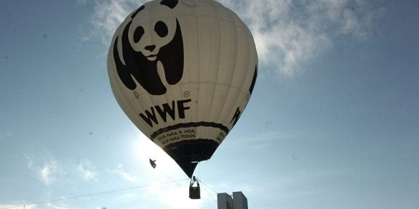 World Wildlife Federation hot air balloon against a blue sky